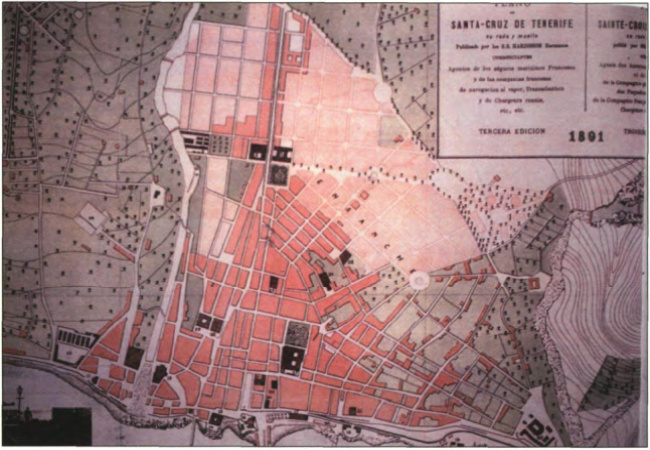 1891(elblancooliva.com)