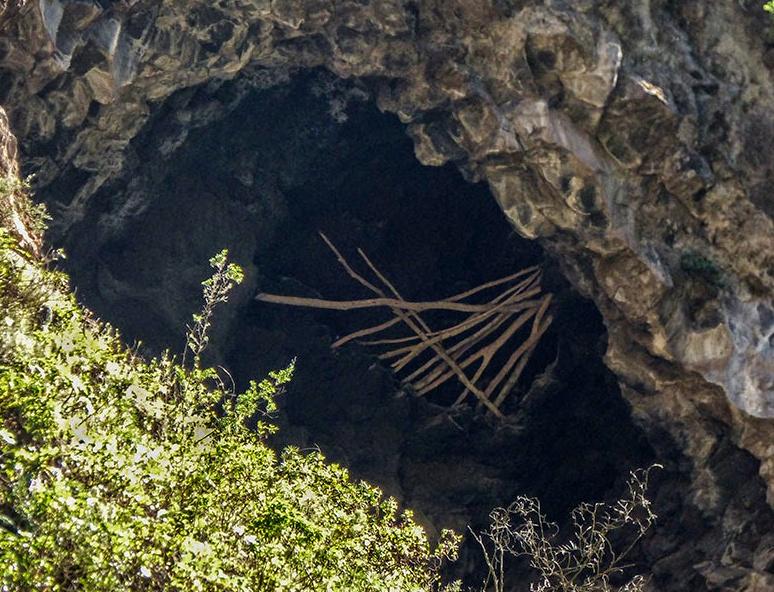 Cueva Canizo